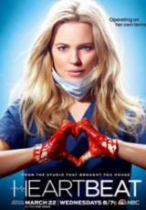 Heartbeat: Todas Temporadas