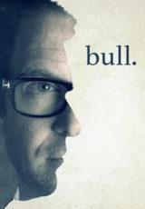 Bull: Todas Temporadas