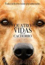 Quatro Vidas de um Cachorro Dublado