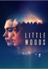 Little Woods Legendado