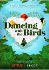 Dança dos Pássaros Dublado