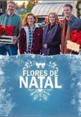 Flores de Natal Dublado